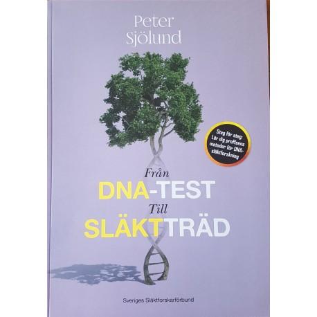 Från DNA-test till släktträd